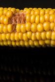 Maïs, snacking, macro, gele, rijp, smakelijk, food, gezonde e — Stockfoto