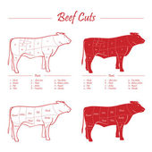 BEEF meat cuts — Stock Vector