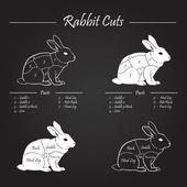 RABBIT meat cuts scheme - chalkboard — Stock Vector