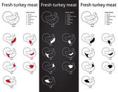 Farm Turkey meat parts — Stock Vector