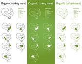 Organic Turkey meat parts — Stock Vector