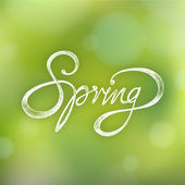 SPRING - Hand drawn season quote on bokeh background — Stock Vector