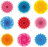 Set of flower heads — Stock Vector
