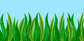 Ladybugs in the grass — Stock Vector