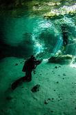 Cenotes od yucatan — Zdjęcie stockowe