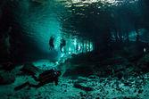 Cenotes från yucatan — Stockfoto