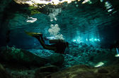 Cenotes From Yucatan — Stock Photo