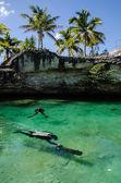 Cenotes From Yucatan — Stock Photo