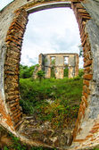 Ruins of a french plantation — Stock Photo