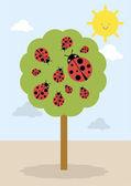 Lady bug tree — Stock Vector
