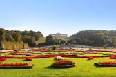 Great Parterre Garden at Schonbrunn Palace — Stock Photo