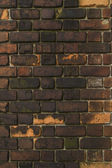 Old brick wall, background image — Foto Stock