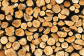 Pile of cuted wood stump, brunches texture — Stock Photo