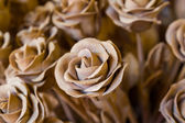 Paper rose — Stock Photo