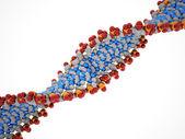 DNA structure isolated  — Zdjęcie stockowe