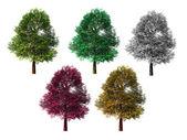 Beş izole renkli — Stok fotoğraf