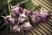 Dying wilted roses on wooden decking background — Stock Photo