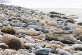 Rough concrete and pebble beach shallow depth of field — Stock Photo