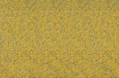 Yellow carpet texture — Stock Photo