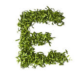Salad letter E on white background — 图库照片