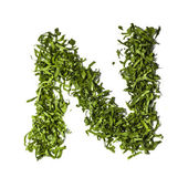 Salad letter N on white background — Stock Photo