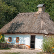 Old house with a thatched roof in the village. — Stock Photo #51121907