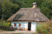Old house with a thatched roof in the village. — Stock Photo