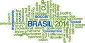 Word cloud concept of Brasil 2014 football championship in vector — Stock Vector