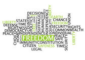 Freedom word cloud tag concept on white background - vector — Stock Vector