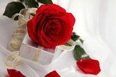 Valentine's Day Celebration — Stock Photo