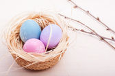 Easter eggs in nest on rustic wooden planks — Stock Photo