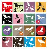 Birds Icons Set — Stock Vector