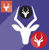 Impala head — Stock Vector