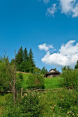 Summer mountain landscape  — Стоковое фото