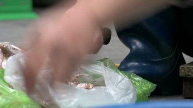 Woman hands cutting the prawns — Vídeo de stock