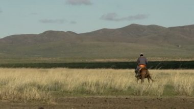 Mongolian Nomad on a horse — Stock Video