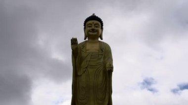 Golden Buddha in Ulaanbaatar, Mongolia — Stock Video