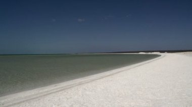 Shell Beach in the Shark Bay National Park — Stock Video