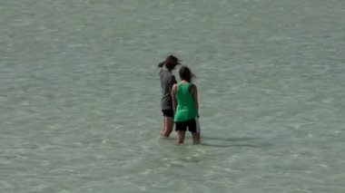 Girls in the water in Monkey Mia Shark Bay National Park — Stock Video