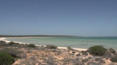 Little lagoon in Shark Bay National Park — Stock Video