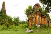 Shwe Inn Thein stupas — Stock Photo