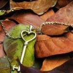 Golden key necklace on autumn leafs — Stock Photo #50506109