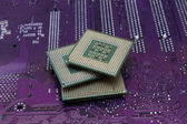 processors on the motherboard — Stock Photo
