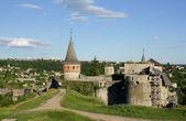 Kamjanetsky fortress back view — Stock Photo