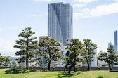 Gökdelenler ve tokyo Japonya Japon bahçesi — Stok fotoğraf