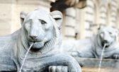 Lion shaped fountain in rome — Stockfoto