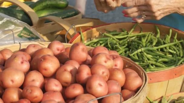 Femme au marché des fermiers. — Vidéo