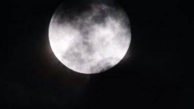 Full Moon in October — Stockvideo