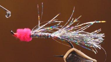 Flyfishing — Stock Video