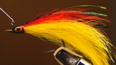 Fly tying Saltwater Streamer — Stock Video